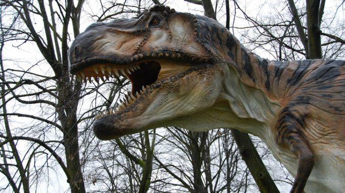 Mostra dinosauri a Gubbio